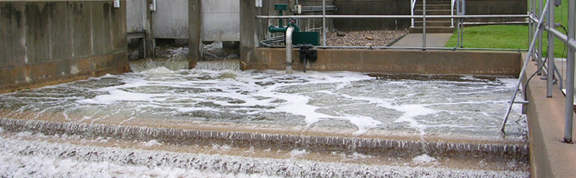 Sewage Waste